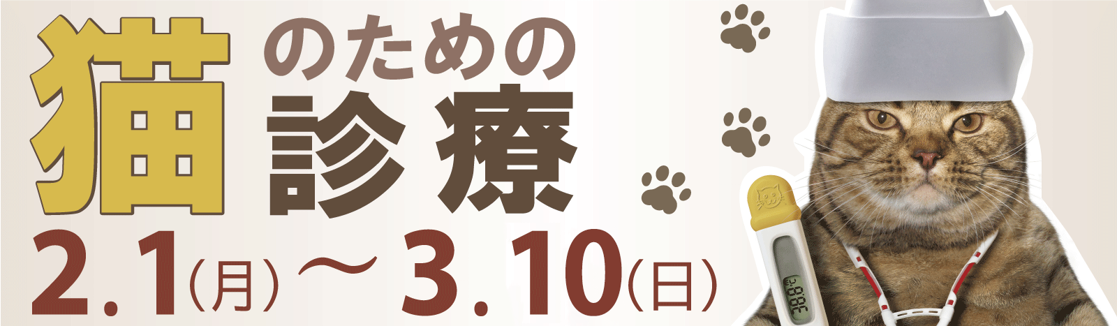 猫診療キャンペーン
